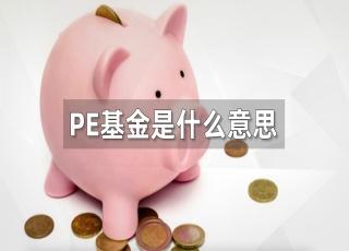 PE基金是什么意思