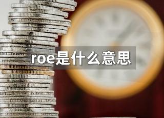 roe是什么财务指标