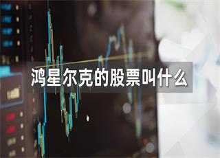 鸿星尔克的股票叫什么